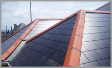 Dorset Roofing Systems : Roofing