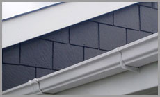 Dorset Roofing Systems : Fascias and guttering